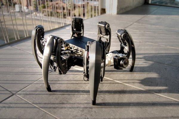 Насекомое-робот, который знает, куда идти