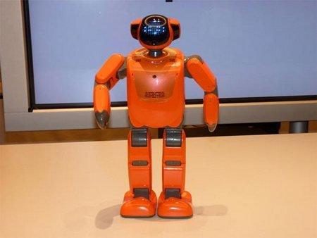 Робот PALRO